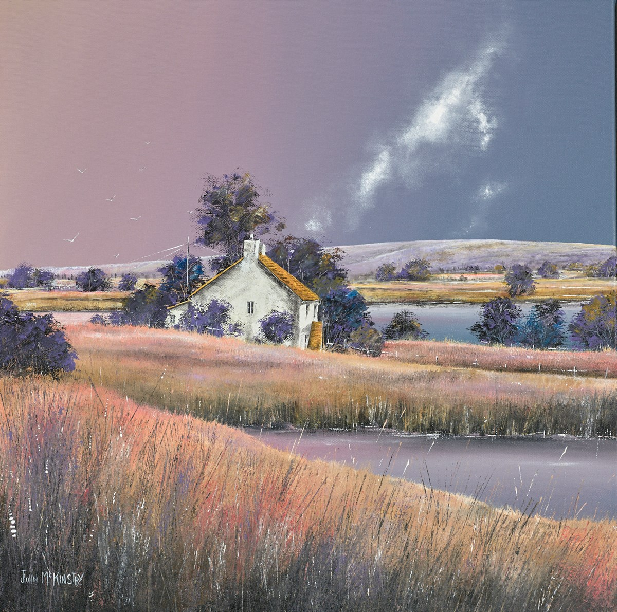 Wetland Cottage